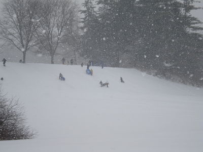 Elm Bank sledding Wellesley MA