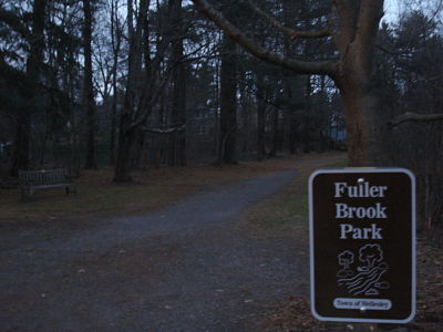 Wellesley's Fuller Brook Park