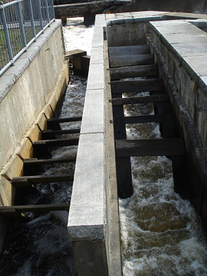 finlay dam fish ladder wellesley