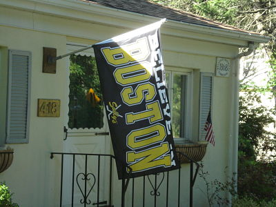 wellesley bruins flag