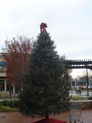 Linden Square Christmas tree with cart