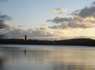 Lake Waban May 2012