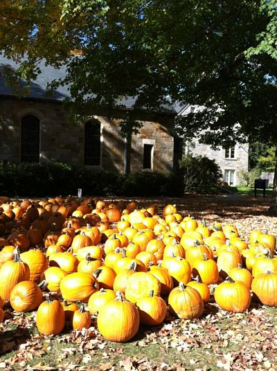 2012 wellesley hills congregational church pumpkin patch