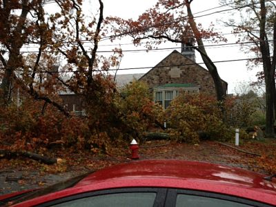 Sprague Elementary School trees down Hurricane Sandy