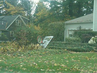 Sandy takes down basketball hoop in Wellesley