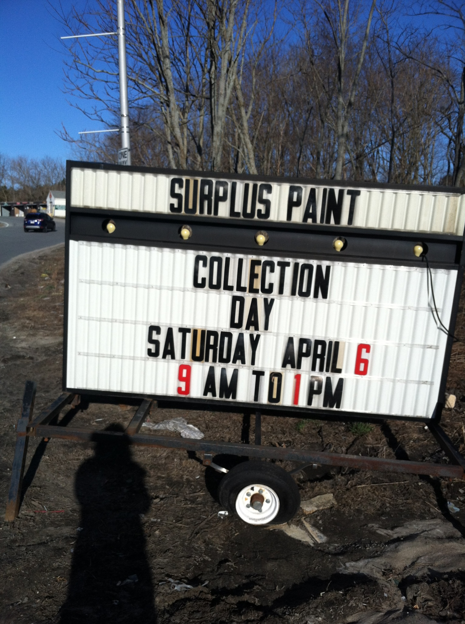 Wellesley free library comes alive with student art the swellesley report news about - Painting tips will make home come alive ...