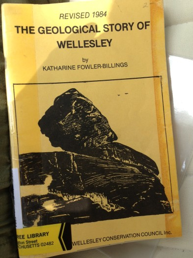 Wellesley geology book