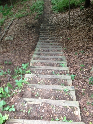 Stairs on Charles River Path