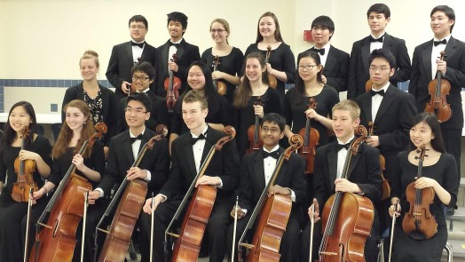 Honors Chamber Orchestra, WHS