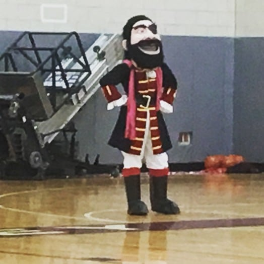 wellesley high raider mascot