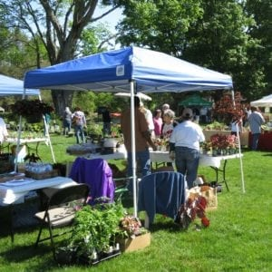 Wellesley's Mass Hort, Gardeners' Fair