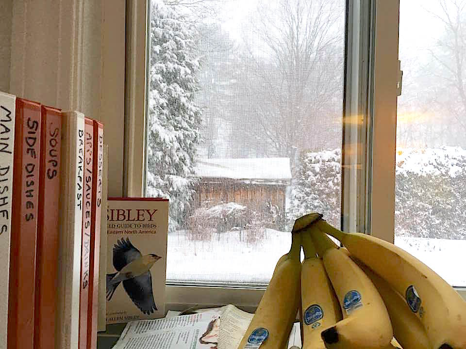 Wellesley Blizzard 2017, cozy kitchen corner.