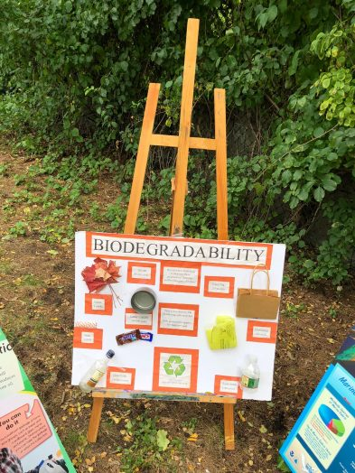 biodegradability wellesley