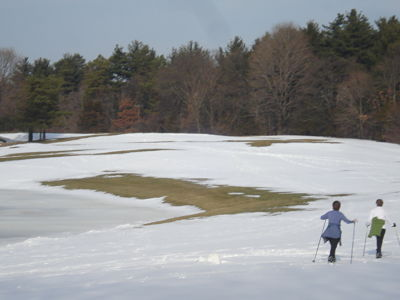 Wellesley Country Club cross country skiing