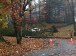 Large Oak Tree falls across Bristol Road at the Upham School path taking a utility pole & wires down with it...