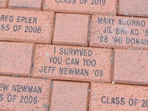 Wellesley High Brick