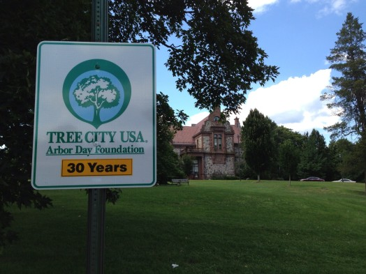 tree city sign