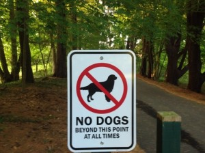 no dogs elm bank