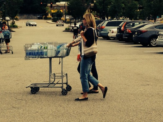 Wellesley water shoppers