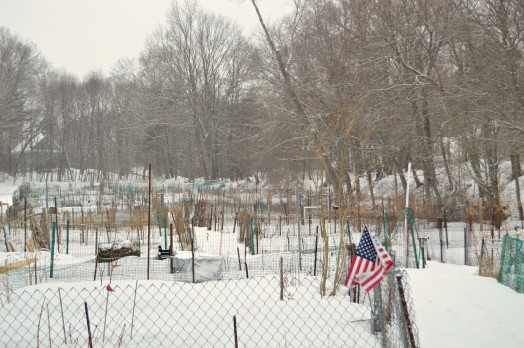 Snow on the first day of Spring at Brookside Community Gardens. Just another power play to prove that no matter what the calendar says, we are still winter's, well, never mind.