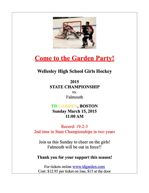 wellesley girls hockey