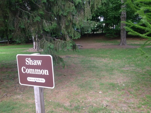 Shaw Common wellesley laurel av