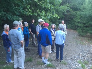 Wellesley birding walk