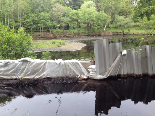 Fuller Brook Park under wraps in Wellesley