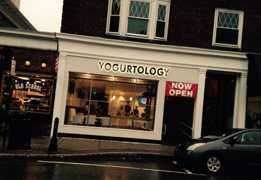 Wellesley Yogurtology