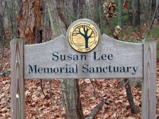 Wellesley Guernsey Sanctuary Hike, Fall 2015