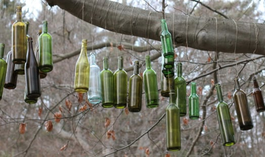 wellesley bottle tree