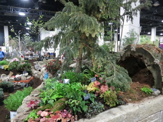 "This was Mass Hort's lush and fabulous contribution to the Boston Flower Show's 2015 display on the main floor. This year's them is ""Nurtured by Nature."""