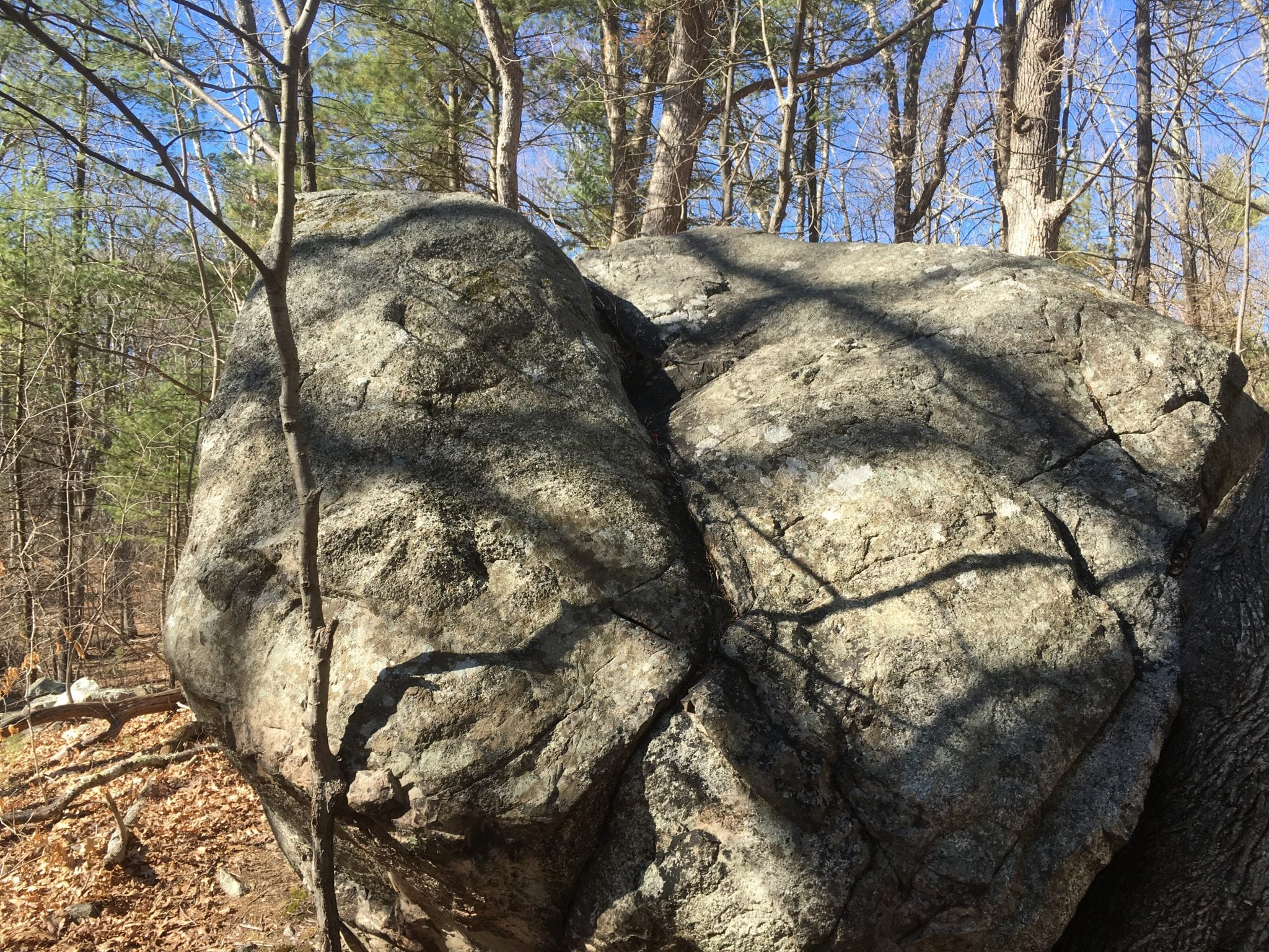 elephant rock wellesley trails boulder brook reservation