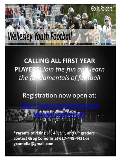 Wellesley Youth Football