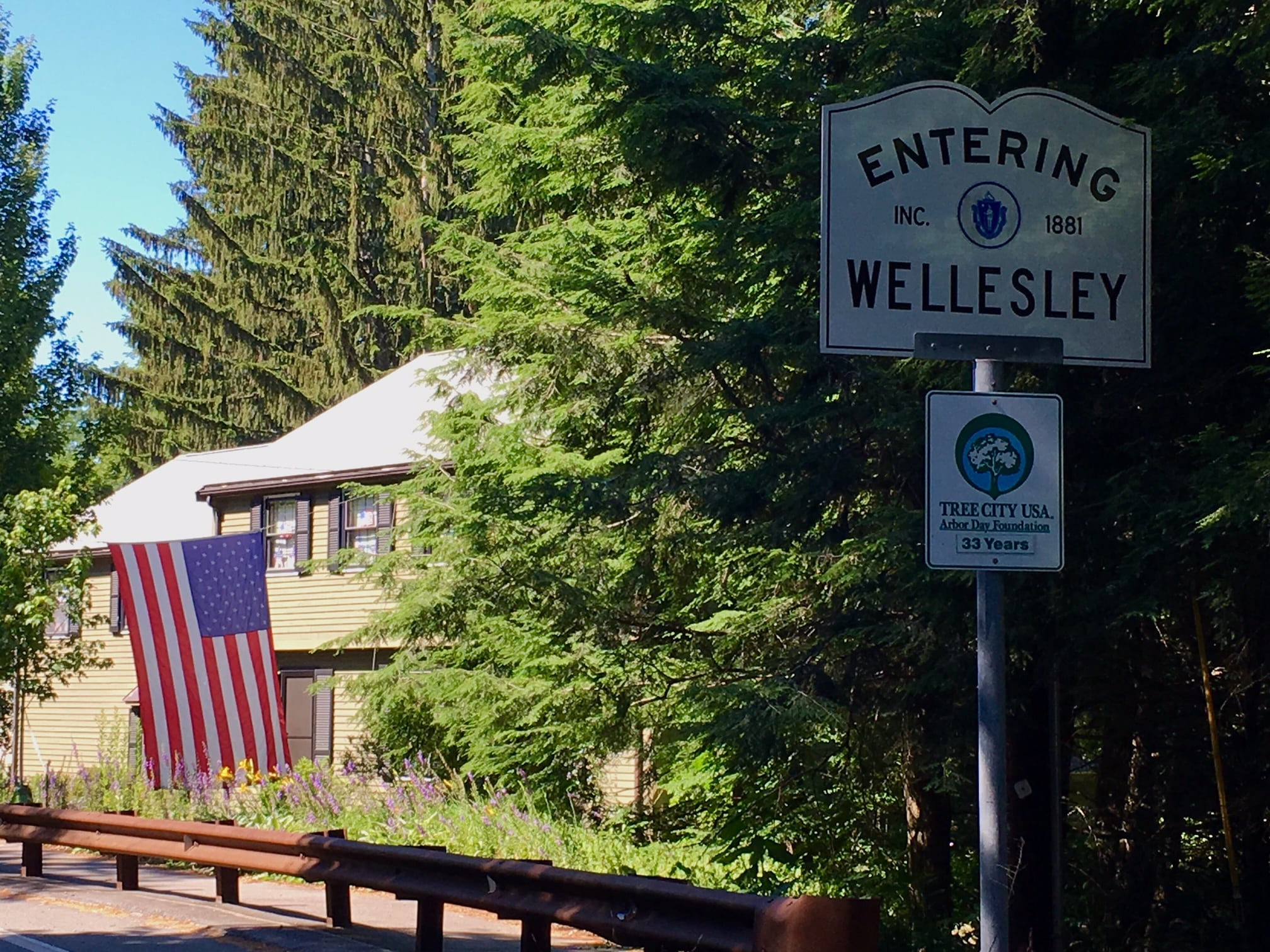Wellesley American flag