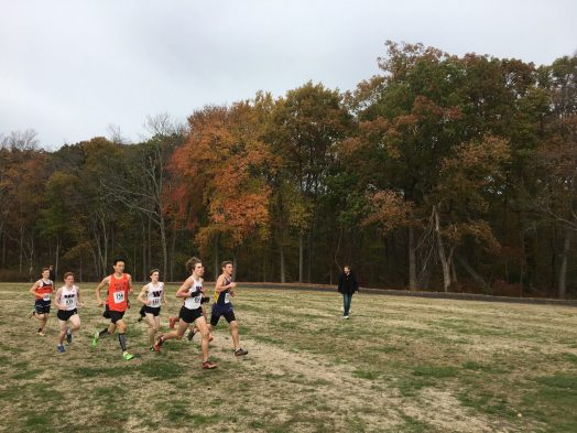 wellesley high cross country, bsc, 2015