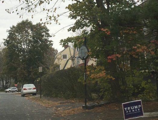 trump sign denton road wellesley