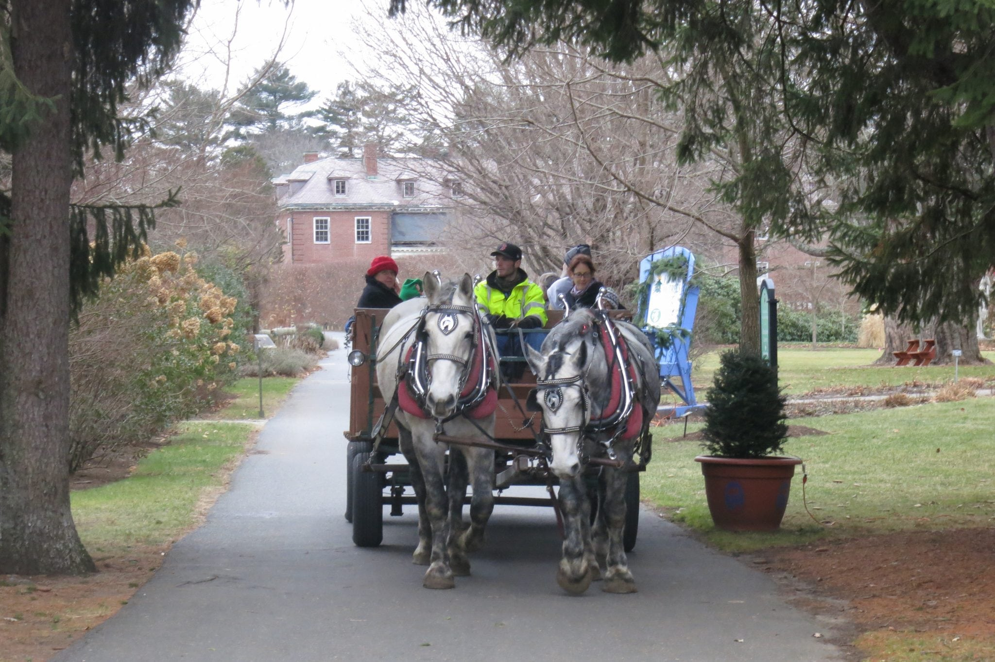 Enjoy a wagon ride duing Mass Hort's Festival of Trees celebration. Photo credit: Mass Hort