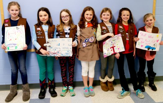 girl scouts 3rd grade 2017