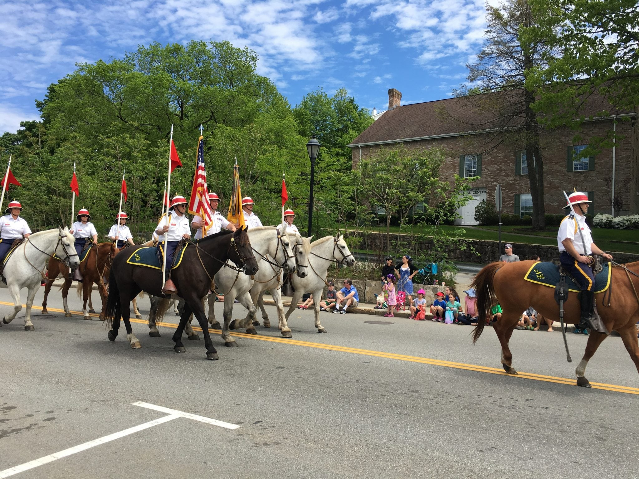 horses, Wellesley veterans parade