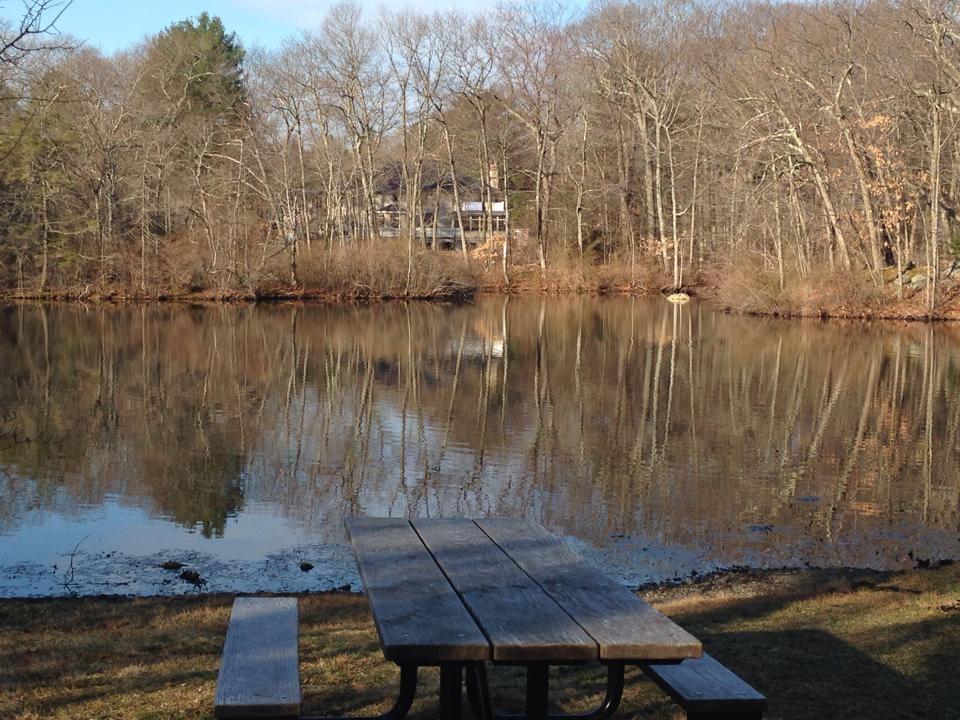 Rockridge Pond, Wellesley, picnic table