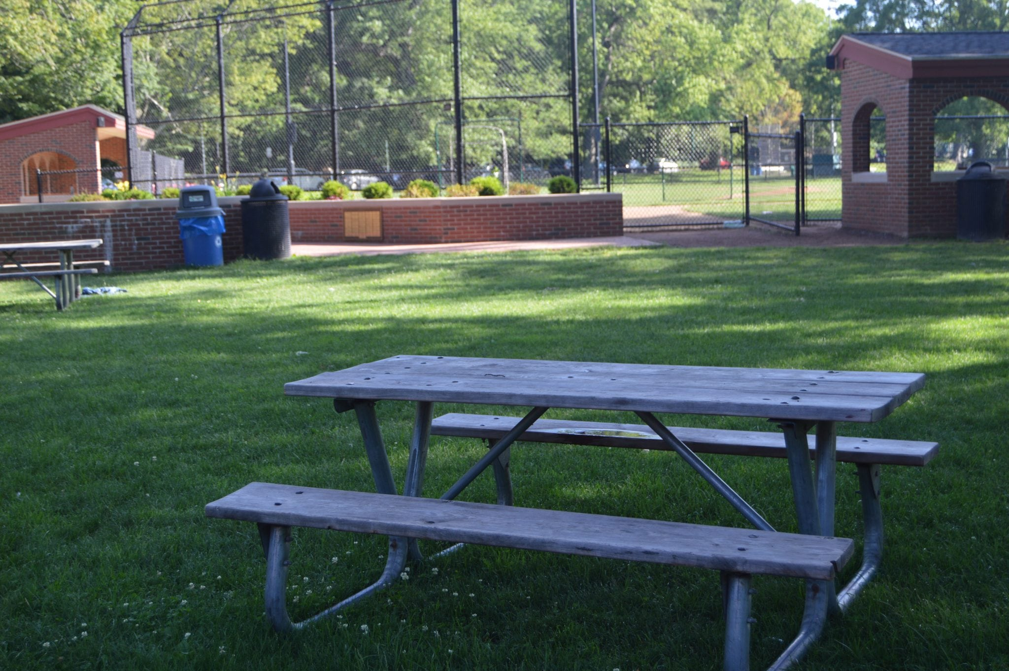 Picnic near Reidy Field baseball field, just watch out for foul balls. Behind Whole Foods.