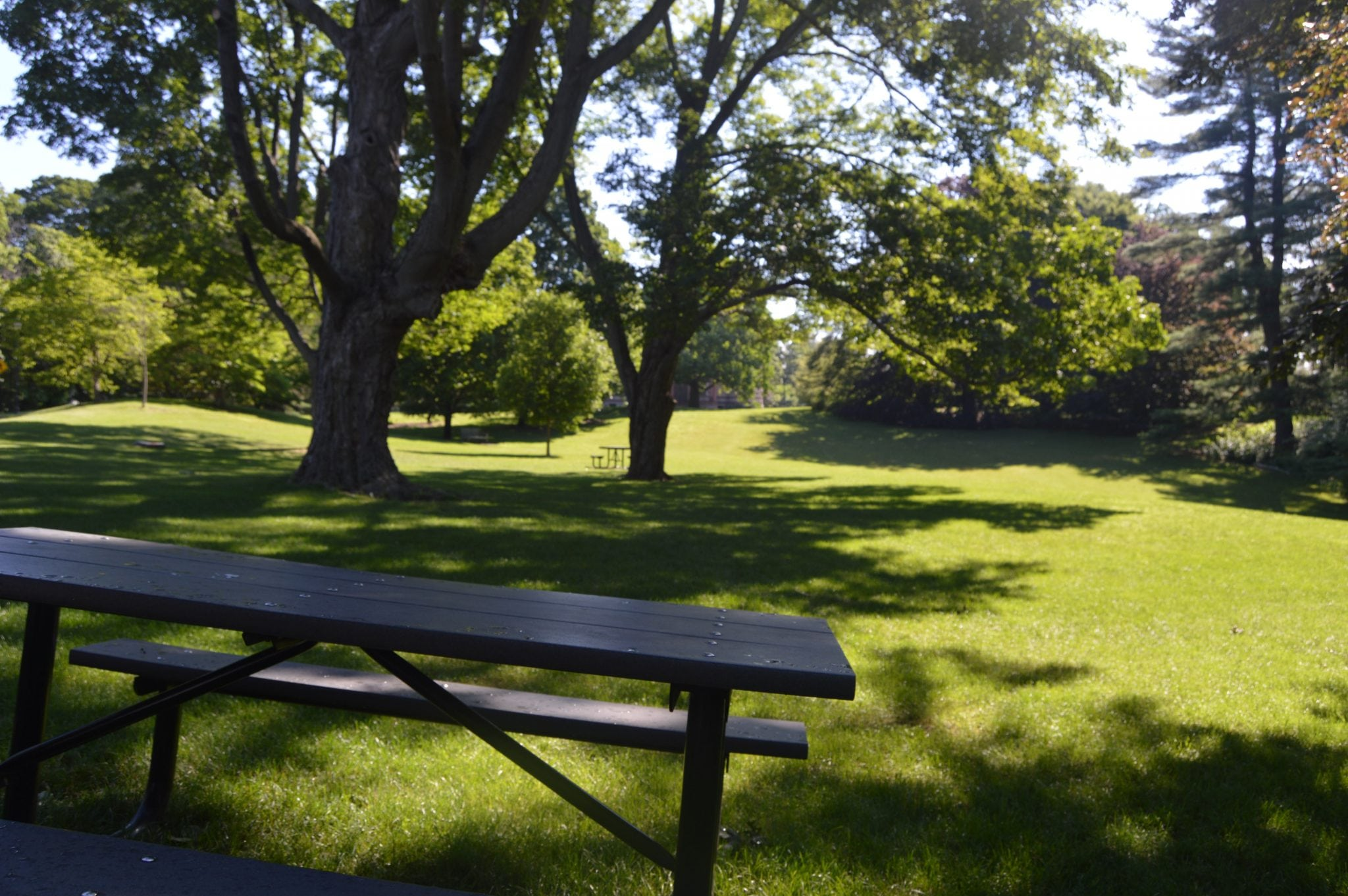 Wellesley Town Hall green picnic table