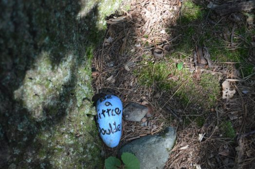 Be a Little Boulder kindness rock, North 40, Wellesley