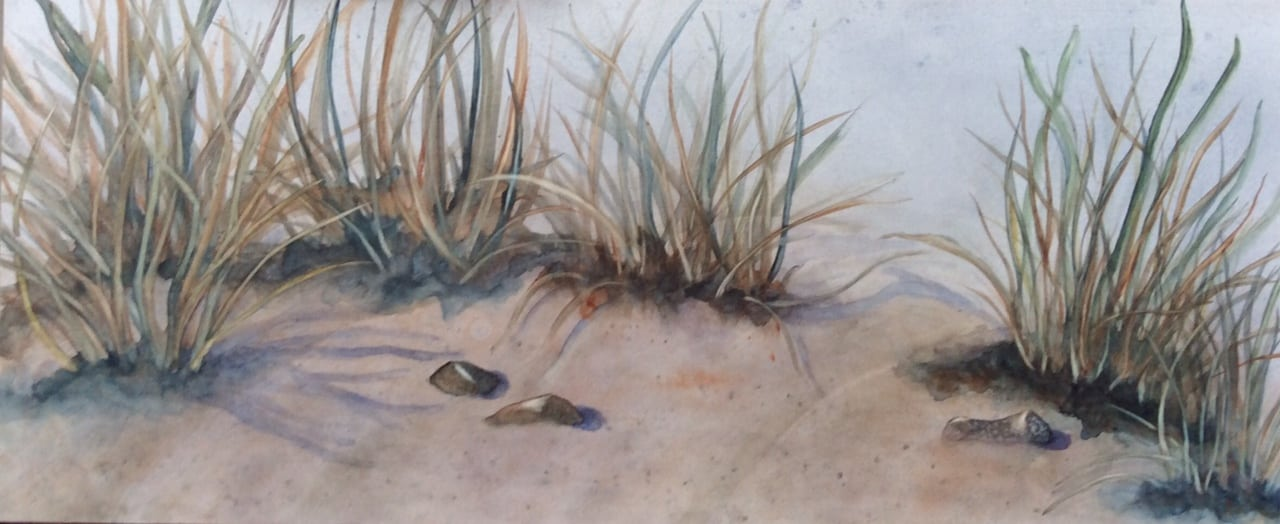 """Beach Grass"", watercolor on aquaboard by Yvonne Unger,"