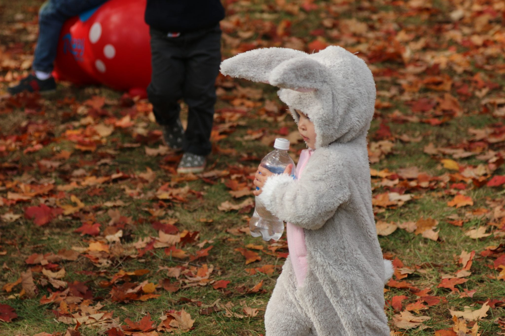 Halloween Parade, Wellesley Rec.