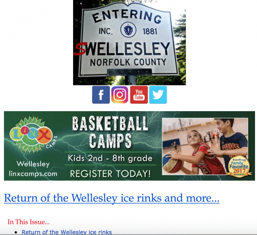 Ads in Swellesley daily newsletter