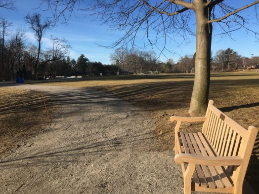 wellesley-xc-bench