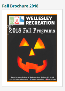 Wellesley Recreation, Fall brochure