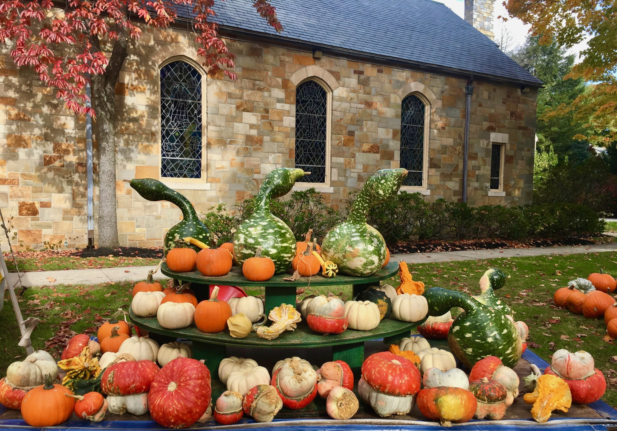 Wellesley Hills Congregational Church, pumpkin time